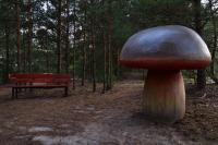 130801-210346-Pilka-Park-Grzybowy.jpg